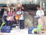 Musicians at Oholei Beach Resort